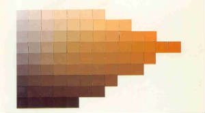 Yellow-Orange/Burnt Umber Hue/Value/Chroma Scale